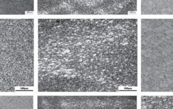 初始晶粒均匀性对GH720Li 合金等温锻造组织演变的影响规律